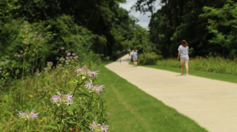 people walking on Greenway path in Athens, Georgia